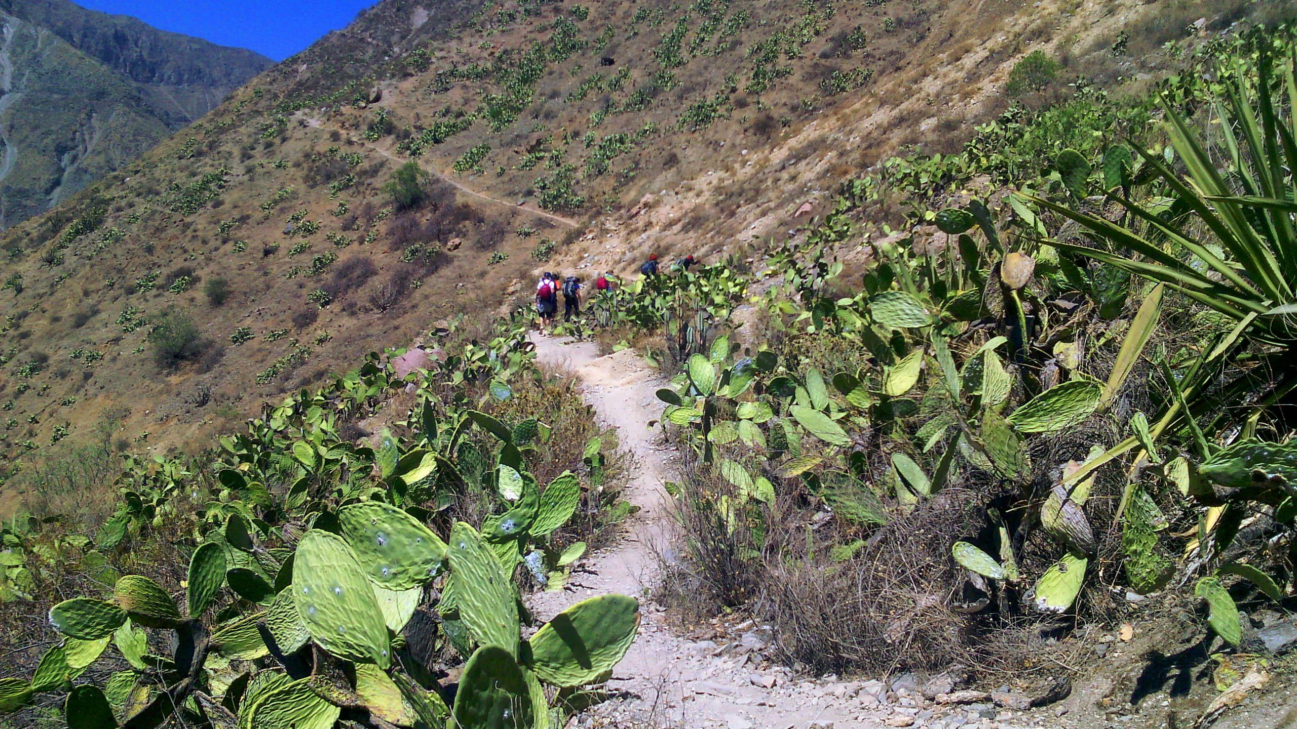 trekking-canion-del-colca