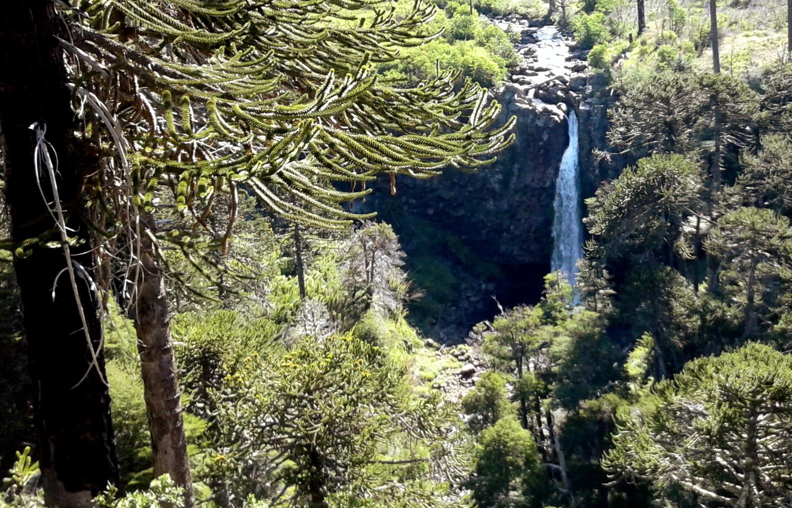cascata-coloco